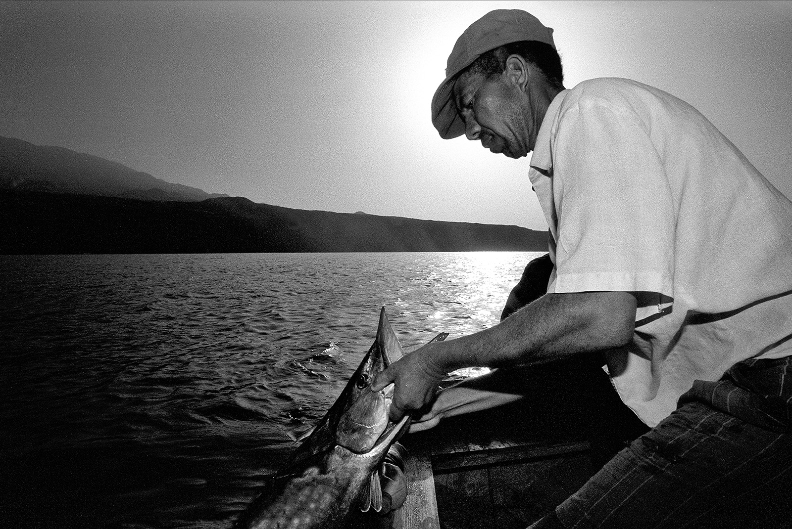 Pulling the first and only tuna for today out of the sea.